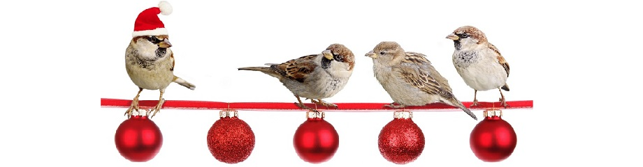 sparrows-holiday Banner